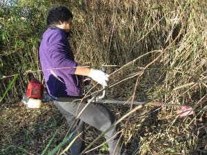 笹を刈るひと